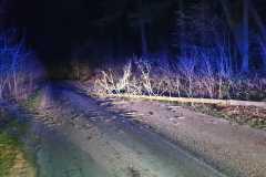 #11 09.02.2020r. droga Żelazno - Zwartowo drzewo powalone na jezdnię