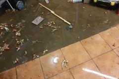 #11 10.02.2021r. Choczewo ul. Kościuszki 17 - piwnica i posesja zalana wodą