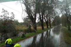 #124 14.10.2020r. Borkowo Lęborskie - suche drzewo zagrażające powaleniem na drogę