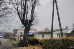#139 26.11.2020r. Lublewo Lęborskie 15A - drzewo zagrażające powaleniem na budynek i posesję
