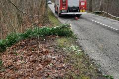 #143 27.12.2020r. droga Borkowo Lęborskie - Przebendowo - drzewo powalone na drogę