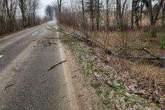 #18 11.03.2021r. droga Przebendowo - Borkowo Lęborskie drzewo powalone na drogę