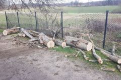 #22 12.03.2020r. Zwartówko 29 - drzewo powalone na drogę