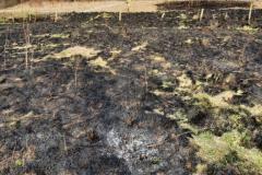 #23 22.03.2021r. Lublewo Lęborskie - pożar suchej trawy