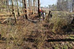 #25 10.04.2021r. Leśnictwo Kopalino oddział leśny 213a - pożar uprawy leśnej