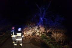 #28 12.03.2020r. Gardkowice - drzewo zagrażające powaleniem na drogę