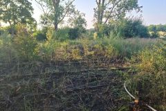 #58 21.07.2021r. Choczewo ul. Pucka - pożar suchej trawy i krzaków