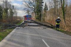 #6 02.02.2020r. droga Choczewo Lublewko Lęborskie drzewo powalone na saochód osobowy oraz drogę wojewódzką