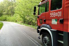 #61 18.05.2020r. Borkowo Lęborskie - konar drzewa wystająjcy na drogę