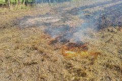 #67 11.08.2019r. Kierzkowo pożar ścierniska