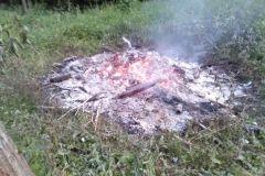 #75 03.07.2020r. Łętówko - ognisko bez dozoru w lesie