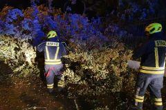 #78 23.09.2021r. Zwartowo 25 - drzewo powalone na drogę powiatową nr DP 1460G i posesję