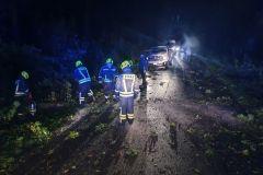 #79 23.09.2021r. droga Żelazno - Zwartowo - 2 drzewa powalone na drogę powiatową nr DP 1322G