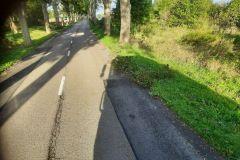 #81 24.09.2021r. Słajkowo - gałęzie i konary drzew na jezdni