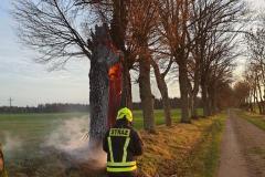 #97 30.12.2019r. Żelazno pożar dwóch drzew